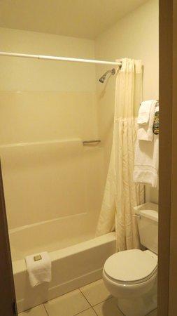 Rodeway Inn : small bathroom