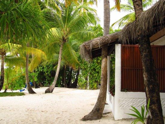 Angaga Island Resort : Beach bungalows