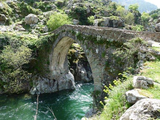 Asco, França: Le pont génois