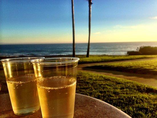 Kon Tiki Inn: Wine from plastic glasses, &11.99, the view, priceless