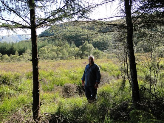 Highland Titles Nature Reserve: My husband roughly 350 yds in front of his plot.  You can see the gap behind him where we couldn