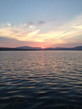 Dingle Bay Speed Boat Tours & Great Blasket Island Experience: Sunset in Dingle harbour