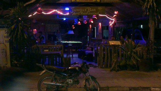Jungle Restaurant : This is jungle bar by night the only bar in vang Vieng with beautiful uv decor.