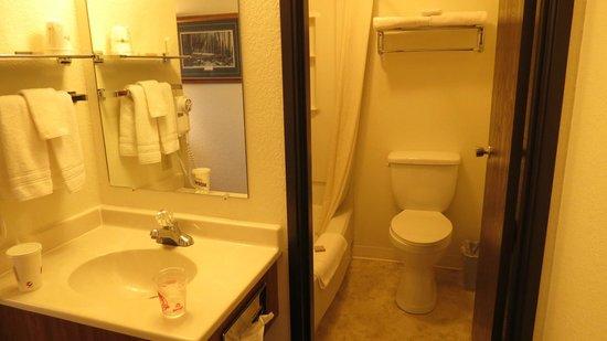 Super 8 Kalispell Glacier National Park: bathroom