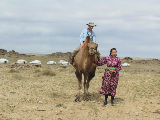 Red Rock Wilderness Camp: Camel Riding at Red Rock Ger camp