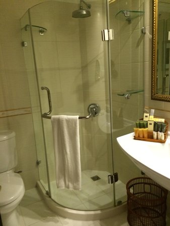 Excelsior Grand Hotel Walk In Rainforest Shower Our Bathroom