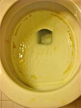 Drewsey, OR: Very dirty, old toilet