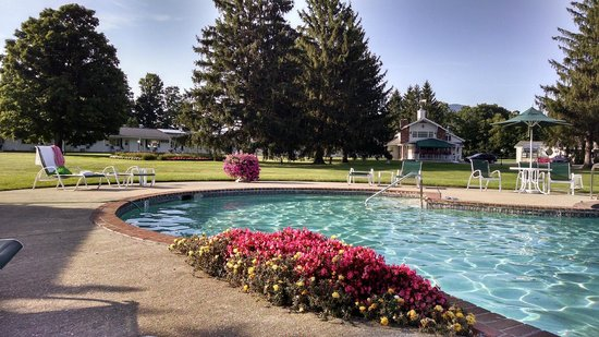Palmer House: Outdoor pool and grounds