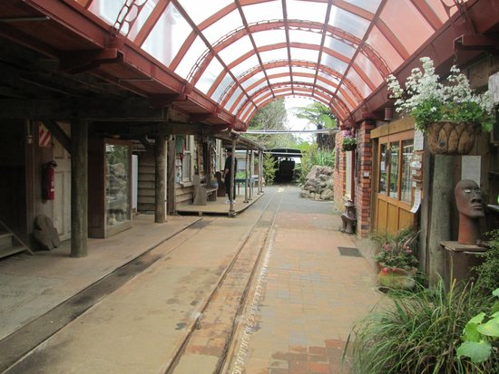 Driving Creek Railway and Potteries: Well worth an explore while you wait for the train.