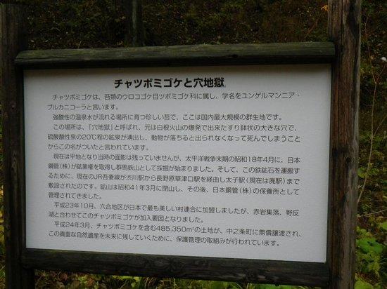 Nakanojo-machi, ญี่ปุ่น: 案内板