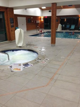 Residence Inn Ann Arbor North: Pool area