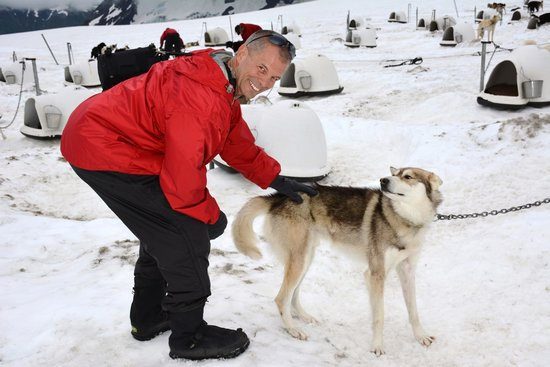 Alpine Air Alaska: The Huskies on Punchbowl may be Iditerod champs but they still love a good back scratch!