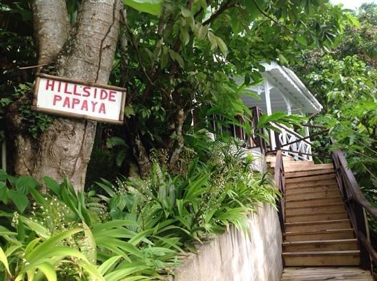 Fond Doux Plantation & Resort: Fond Doux