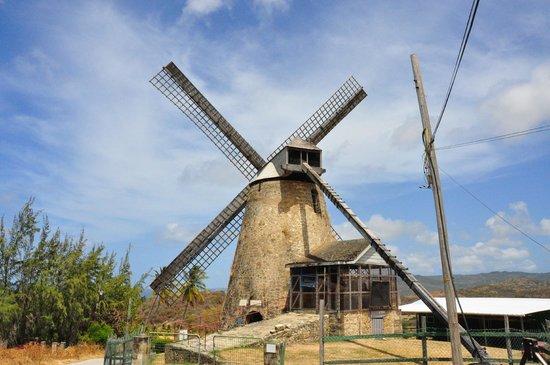Morgan Lewis Mill