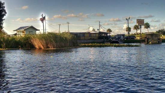 Camp Holly Fishing & Airboats : view from the water