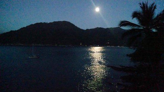 Casa Pericos : Moonlit night