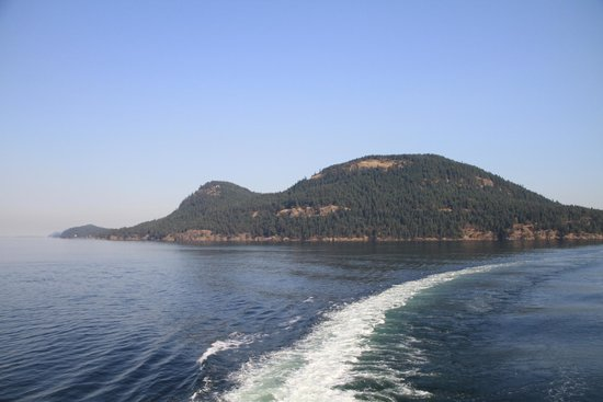 Landsea Tours and Adventures: During our BC Ferry Ride