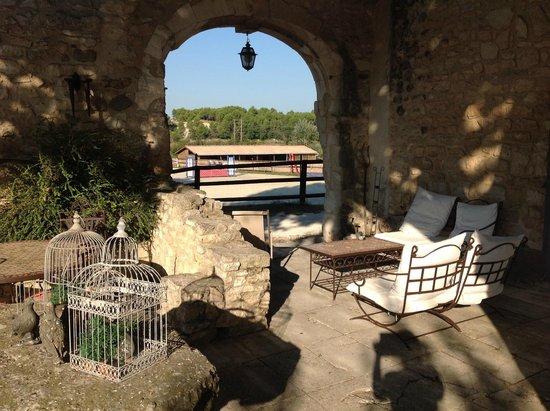 Mas Pichony : Coin détente sur terrasse, vue sur manège