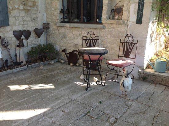 Mas Pichony : Terrasse devant la maison