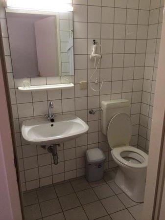 Hotel Goldener Bär: wc and bathroom