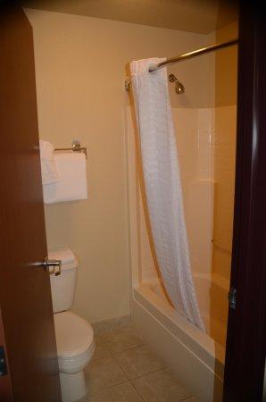 أوكسفورد سويتس هيرميستون: Bathroom