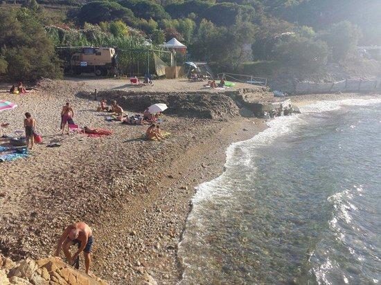 Camping Acquaviva : Spiaggia