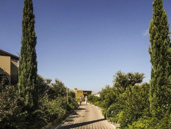 ذا وستن ريزورت كوستا نافارينو: Hotel grounds