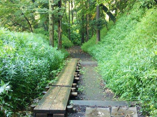 Taman Joshi Iwatsuki