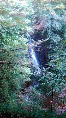 Falling Foss Tea Garden and Waterfall : stunning