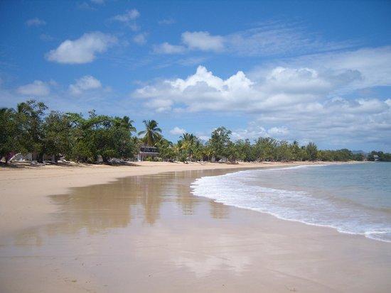 VOI Amarina Resort: La spiaggia dell'Amarina
