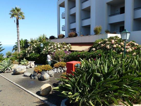 Hotel Jardim Atlantico: Blumenpracht am Hotel