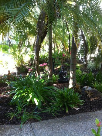 Sandy Beach Resort Noosa : A beautiful garden view room