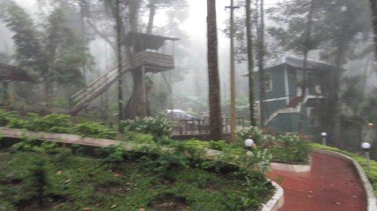 Blue Bells Valley Resort: View
