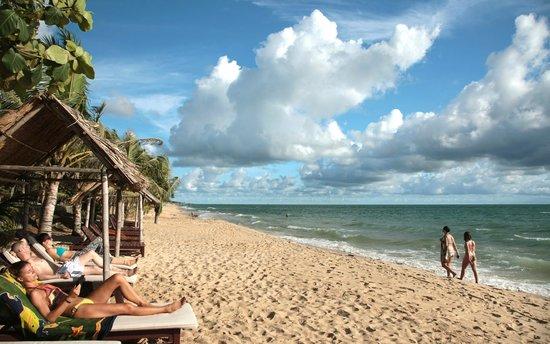 ماي سبا ريزورت: Beach