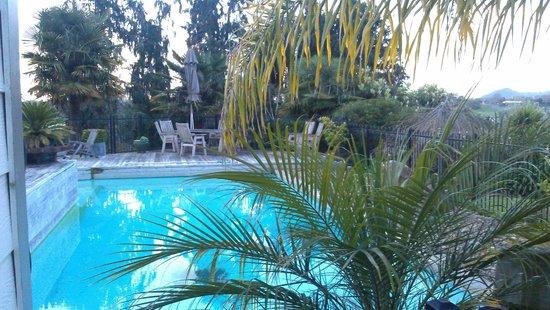 Cambridge Coach House: The pool