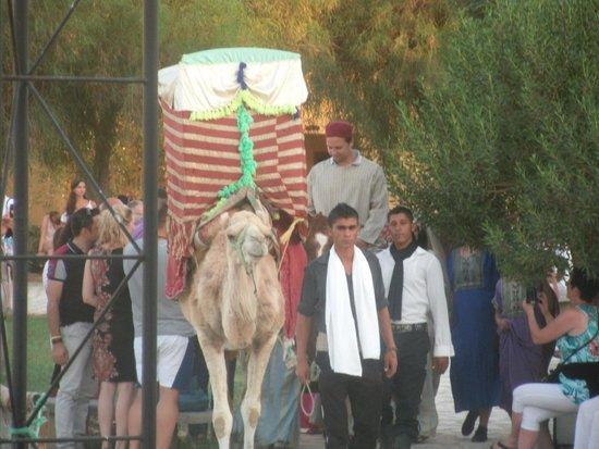 Medinat Alzahra Parc: arabische hochzit