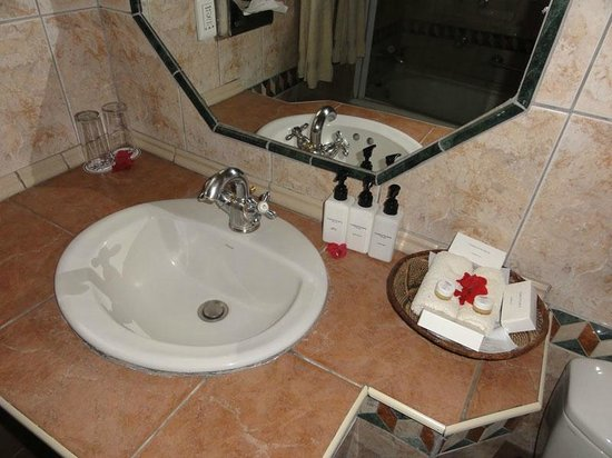 Chobe Game Lodge: Sink, amenities