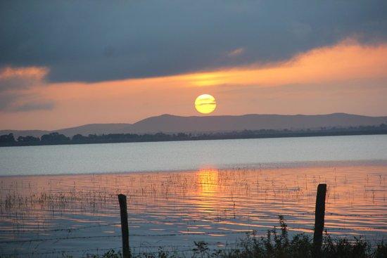 ريد إيرث كابيني: Sunrise