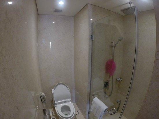 Crowne Plaza Semarang: Shower terpisah dengan bathub