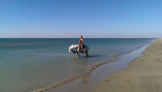 Les Arnelles: la belle plage..