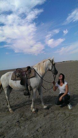 Les Arnelles: en amoure de cheval..