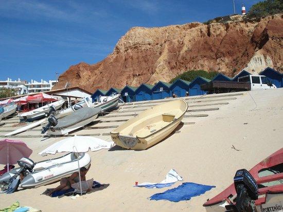 TUI BLUE Falesia: vue de la plage du village