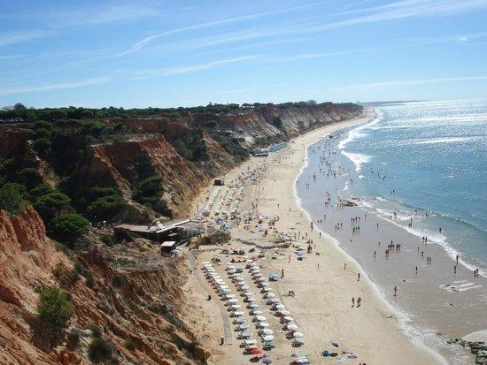 TUI BLUE Falesia: grande plage près de l'hôtel