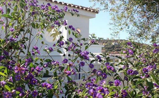 Residence Le Clos Saint Paul: Une terrasse