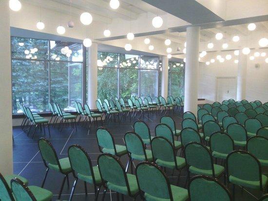 أوتيل ريبينسكايا: Конференц-зал на 250 человек