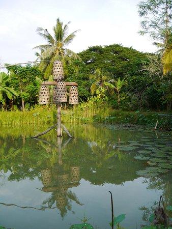 Maisons Wat Kor : l'étang