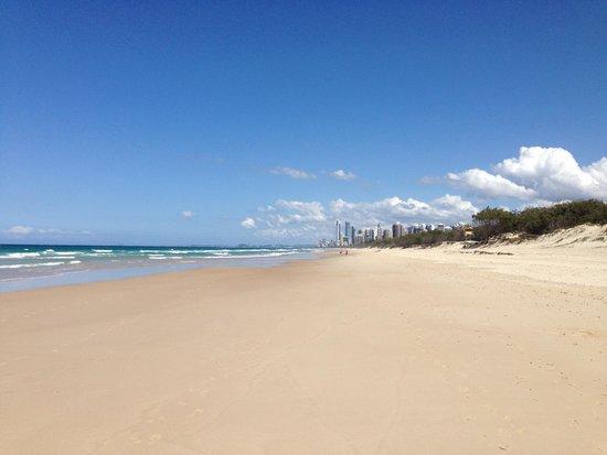 فندق هيلتون سيرفرز بارادايس ريزيدانسيز: beach