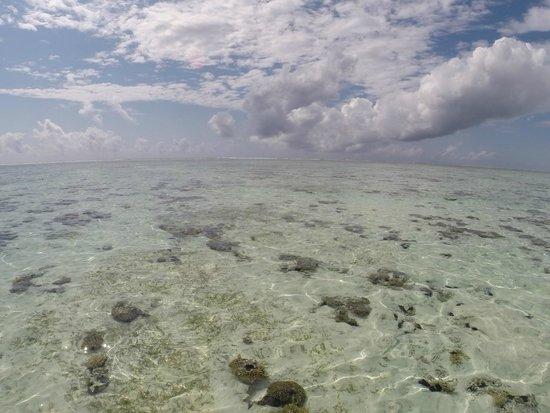 Breezes Beach Club & Spa, Zanzibar: a marée basse