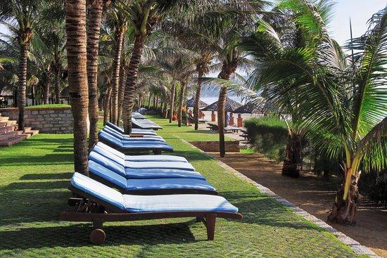 بانادوس ريزورت: Beach