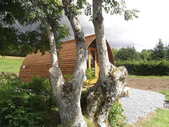 Loch Tay Highland Lodges: Wigwam